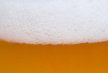 beer-554619_1920-400x270-MM-100.jpg